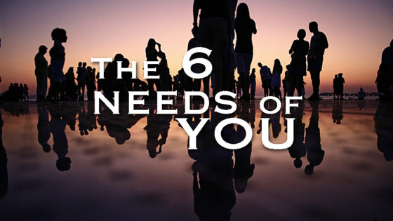 The 6 needs of You